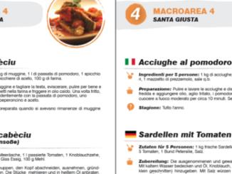Gratis-Rezeptbuch Hausfrauenküche Fischer