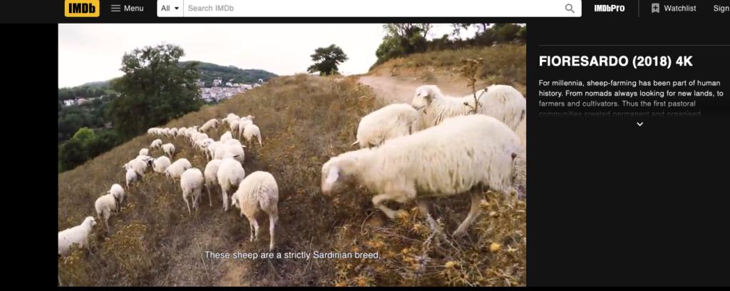 Fiore Sardo Dokumentarfilm