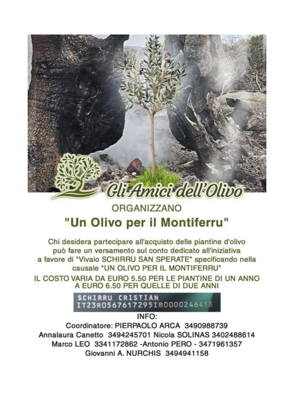 Spendenaktion Un Olivo per il Montiferru